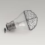 Light bulb with hand drawn brain Stock Image