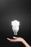 Light bulb in hand with gray background Royalty Free Stock Image