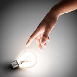 Light bulb with hand stock images