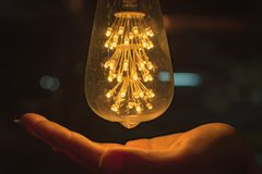 Light bulb with hand Stock Photos