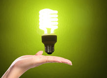Light bulb in the hand Royalty Free Stock Photos