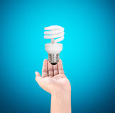 Light bulb in the hand Stock Photography