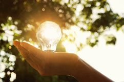 light bulb in hand person with sunset of solar energy Stock Photos