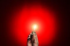 Light bulb in hand on red background Royalty Free Stock Photos