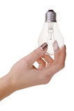 Light bulb in hand on white background Stock Image