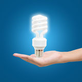 Light bulb in hand woman on blue background Royalty Free Stock Photography