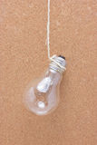Light Bulb Hanging. Stock Photos
