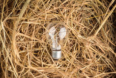 Light bulb on a hay texture Royalty Free Stock Photography