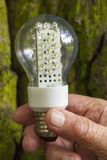 Light bulb held in palm Stock Photos