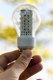 Light bulb held in palm Royalty Free Stock Photos