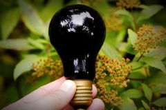 Light bulb held in palm Stock Photo