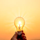 Light bulb hold in hand Royalty Free Stock Images