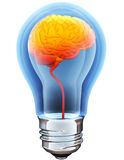 Light bulb with hot brain Royalty Free Stock Images