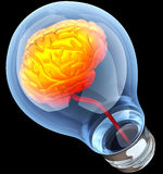Light bulb with hot brain inside Stock Images