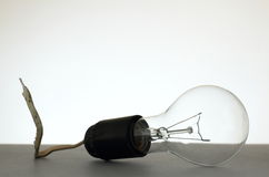Light bulb installed into grubby lamp socket Royalty Free Stock Photography