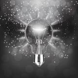 Light Bulb isolated. Illustration. Stock Images