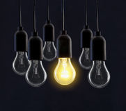 Light bulb lamps. On black background stock photography