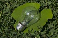 Light bulb on leaf Royalty Free Stock Photos