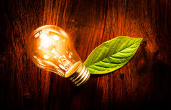 Light bulb with a leaf. Bright light bulb with a green leaf at a wooden table Stock Photos