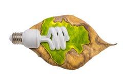 Light bulb and the leaf Stock Photos
