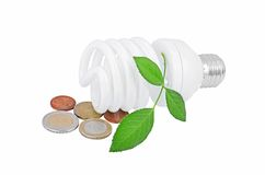 Light bulb and money. Energy saving light bulb and money and plant on white Royalty Free Stock Photo