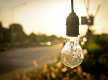 Light bulb in morning Royalty Free Stock Images