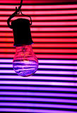 Light Bulb in Neon Royalty Free Stock Photo