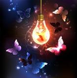 Light bulb with night butterflies. Glass bulb with night butterflies on a dark luminous background. Night butterflies. Design with butterflies Royalty Free Stock Photo