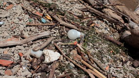 Light bulb and other trash on the river bank. The Light bulb and other trash on the river bank royalty free stock photography