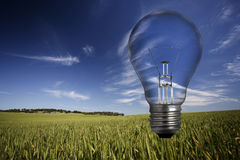 Light bulb over spring landscape Stock Image