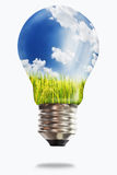 Light bulb with paddy rice Royalty Free Stock Photos