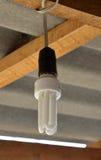 Light bulb. Royalty Free Stock Photography