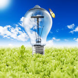 Light Bulb with plant and butterfly Stock Photo