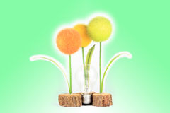 Light bulb with plant color Royalty Free Stock Photography