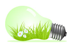 Light bulb with plant and grass Royalty Free Stock Image