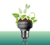 Light Bulb With Plants And Flowers Royalty Free Stock Photography