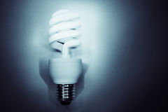 Light bulb. Power saving light bulb closeup Royalty Free Stock Photography