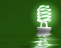 Light bulb reflect. A new bulb ecologic light with refelction on sea royalty free stock photos