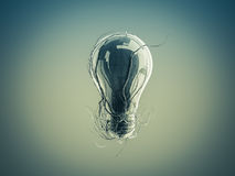 Light bulb with roots and emerged on the icon with roots. Royalty Free Stock Photo