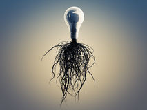 Light bulb with roots and emerged on the icon with roots. Stock Photos