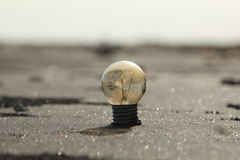 Light bulb in the sand Stock Photo