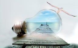 Light Bulb, Seagull, Sea, Web, Pear Royalty Free Stock Photos