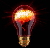 Light bulb with shining brain Stock Photo