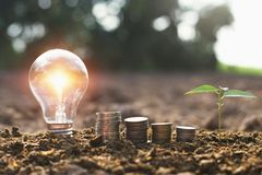 Light bulb with small tree and money stack on soil in nature background. Concept saving energy royalty free stock images