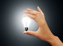 Light bulb small on woman hand Royalty Free Stock Photo
