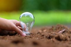 Light bulb on soil with green background. Ecology and saving energy concepts stock photos