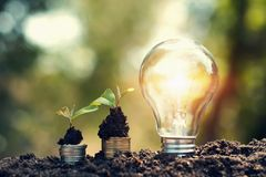 Light bulb on soil with young plant growing on money stack. saving finance and energy. Concept royalty free stock image