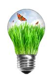 Light bulb with summer meadow and butterflies Royalty Free Stock Image