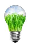 Light bulb with summer meadow inside Stock Photo