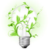 Light bulb twisted with plant vector illustration